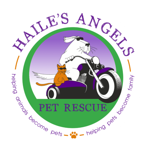 Hailes Angels Pet Rescue